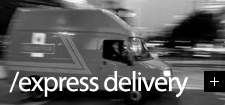 Express, Insured Delivery